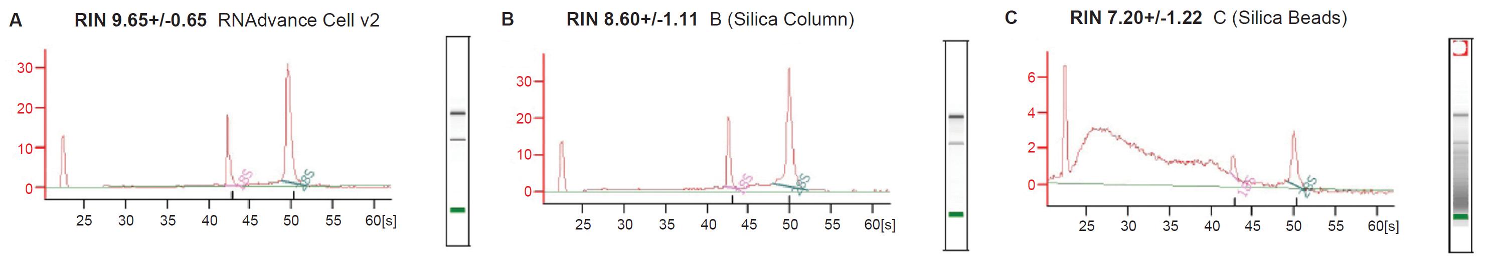 培養細胞からのRNA抽出 RNAdvanc...